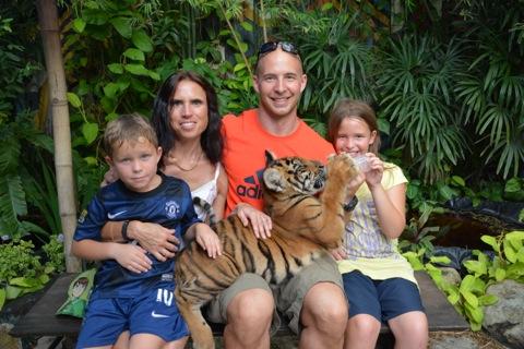 Liten söt tigerunge och lycklig familj
