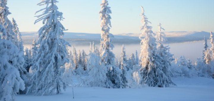 Vackra vinterlandskap!