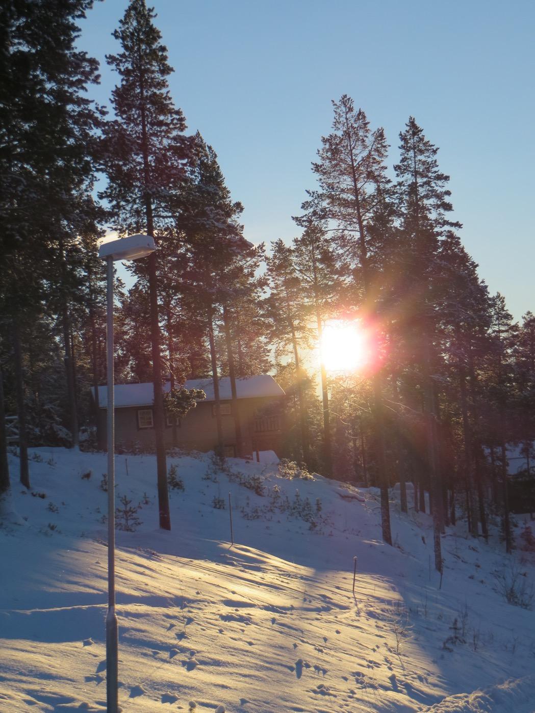 Härlig skidvecka med solsken och blå himmel