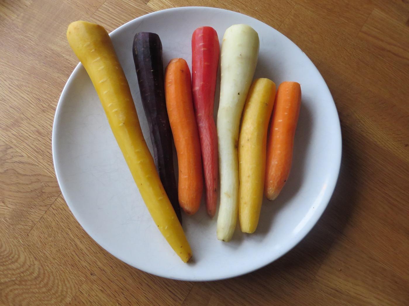Ekologiskt odlade svenska morötter!