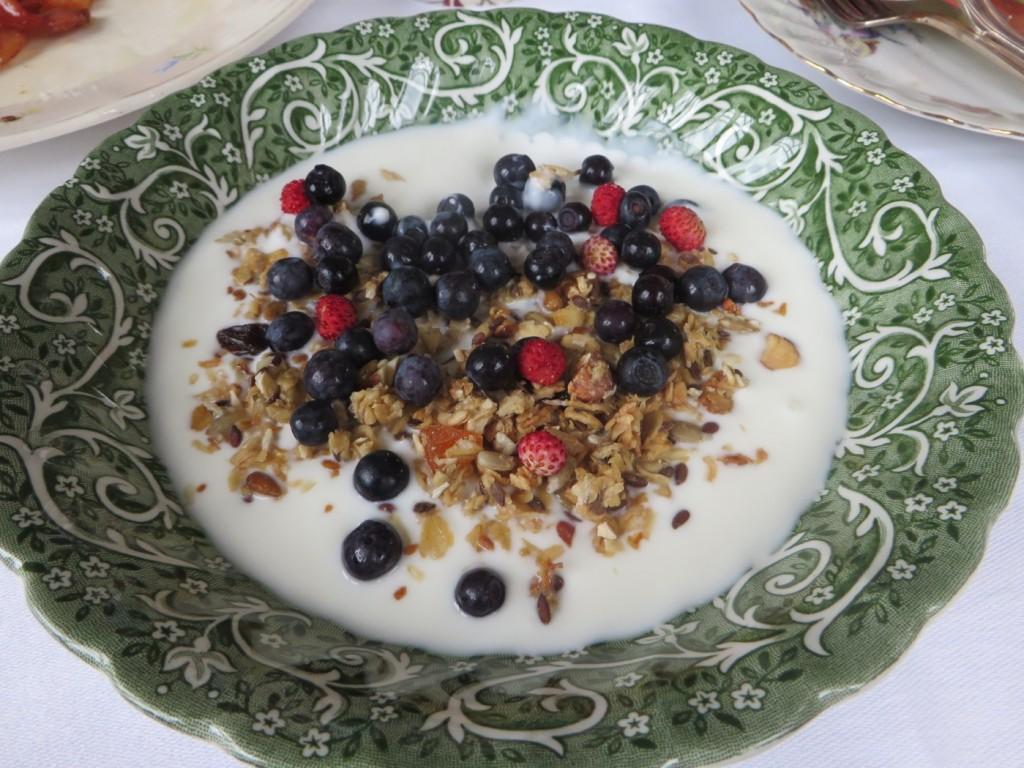 Yoghurt med riktigt god hemgjord granola.