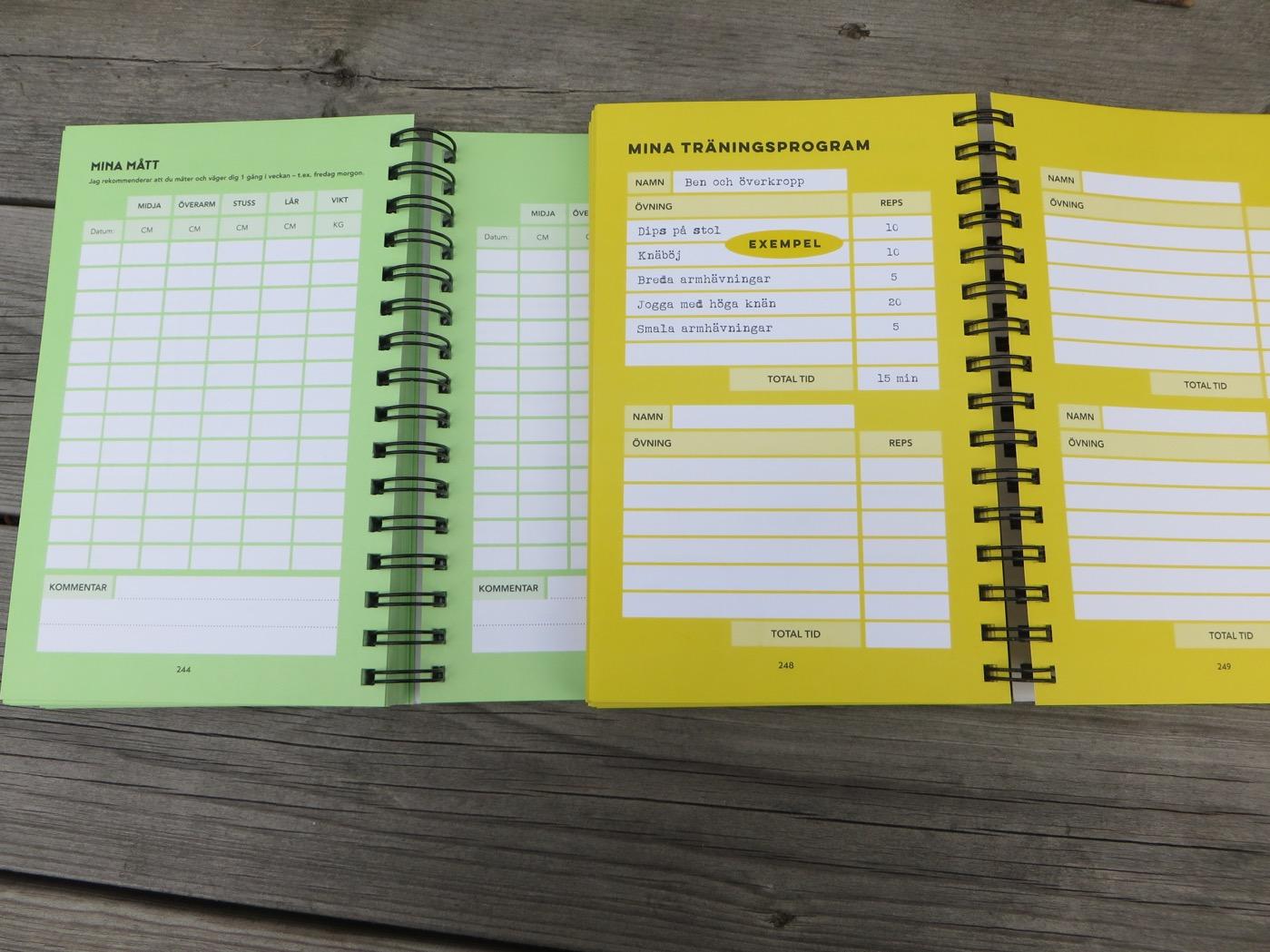träning och kost dagbok