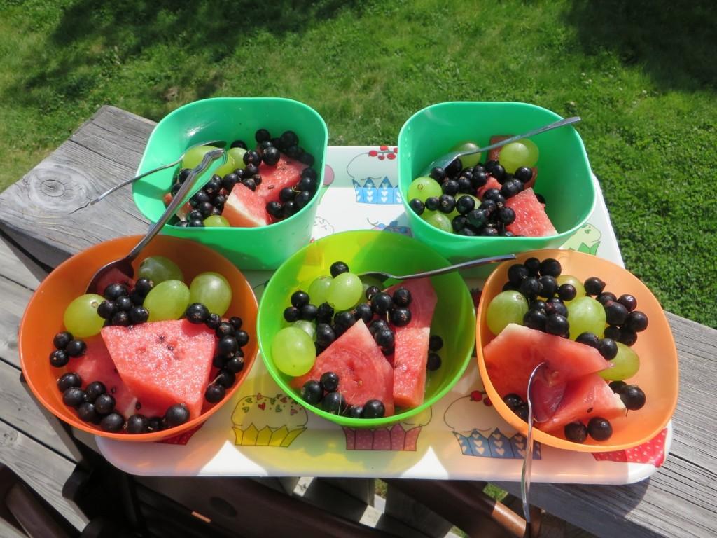 Gott hälsosamt och läskande mellanmål i solen!