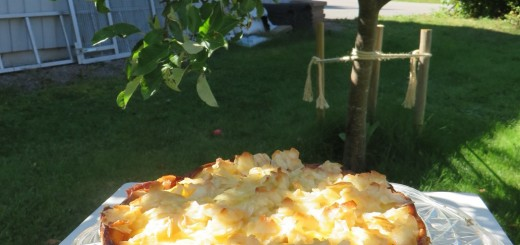 Krämfylld äppelkaka med kokostopping.