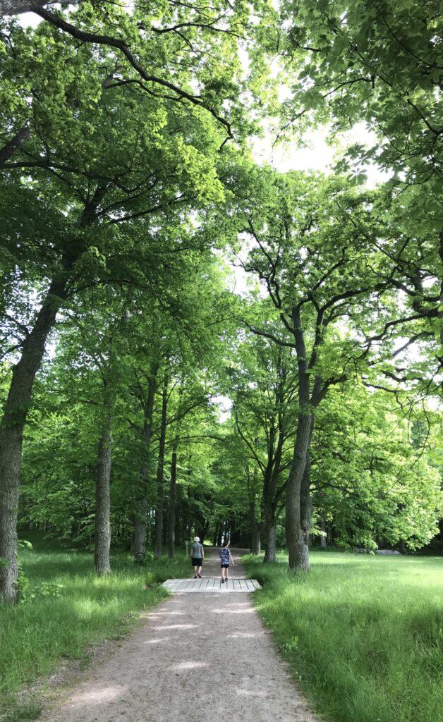 Promenad i trevlig miljö!