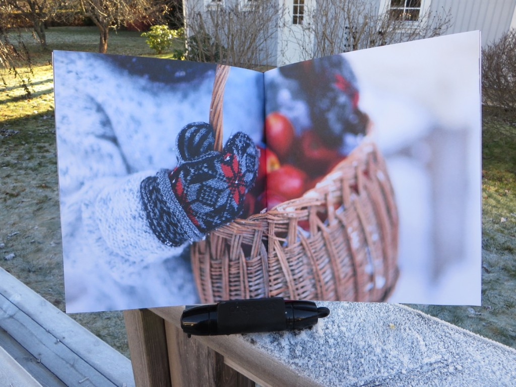 Boken innehåller väldigt vackra vinterbilder.