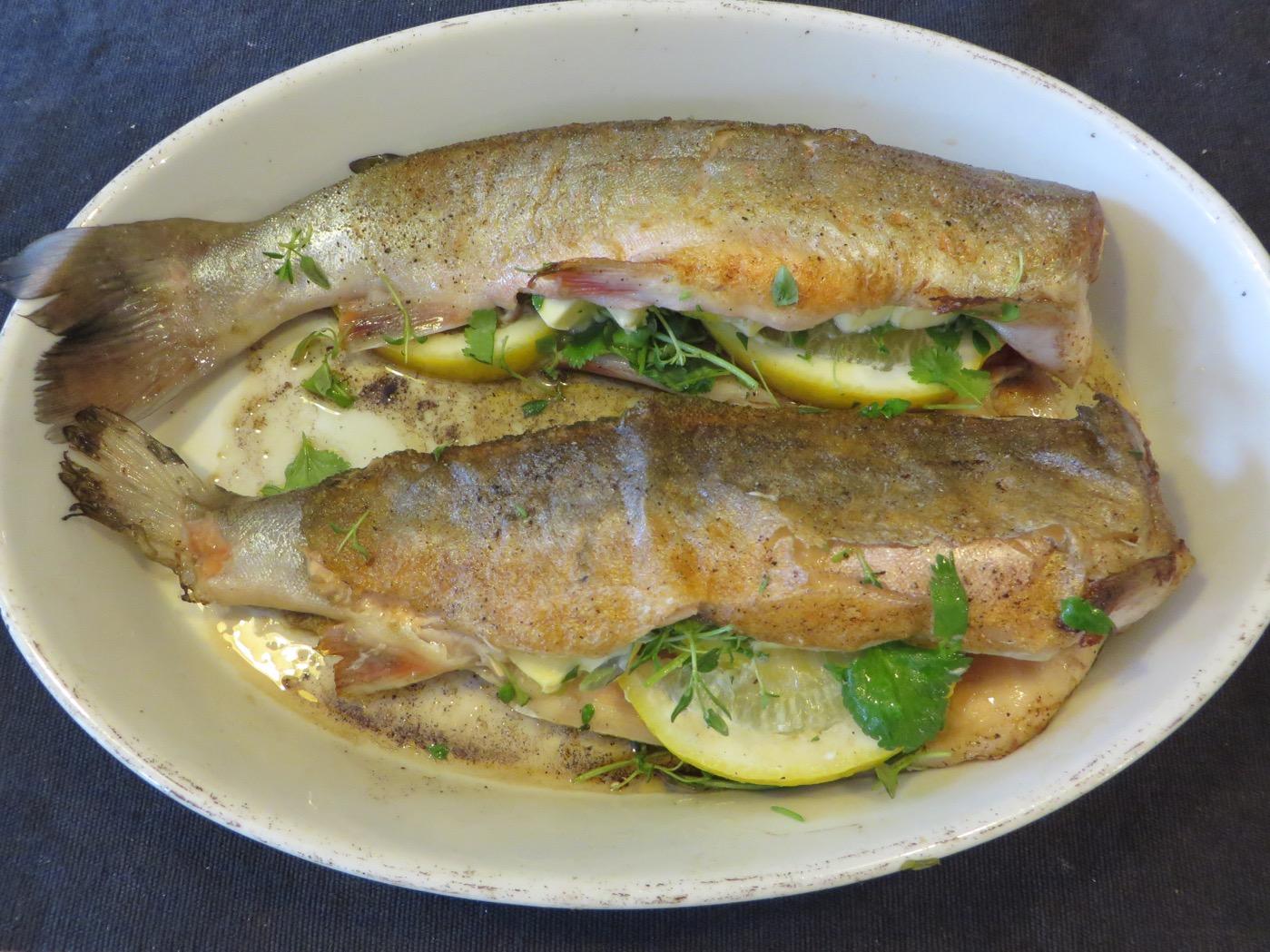 färsk fisk recept