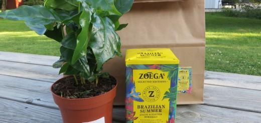 Brasilianska rytmer i Zoégas sommarkaffe 2016