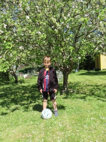 Fotbollskillen under äppelträdet