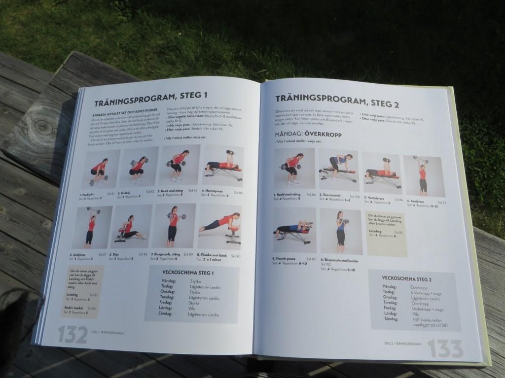 Träningsprogram för de olika stegen