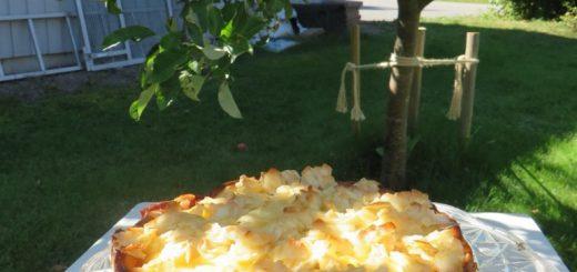 Krämfylld äppelkaka med kokostopping