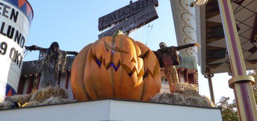 Självklart finns det pumpor på Halloween.