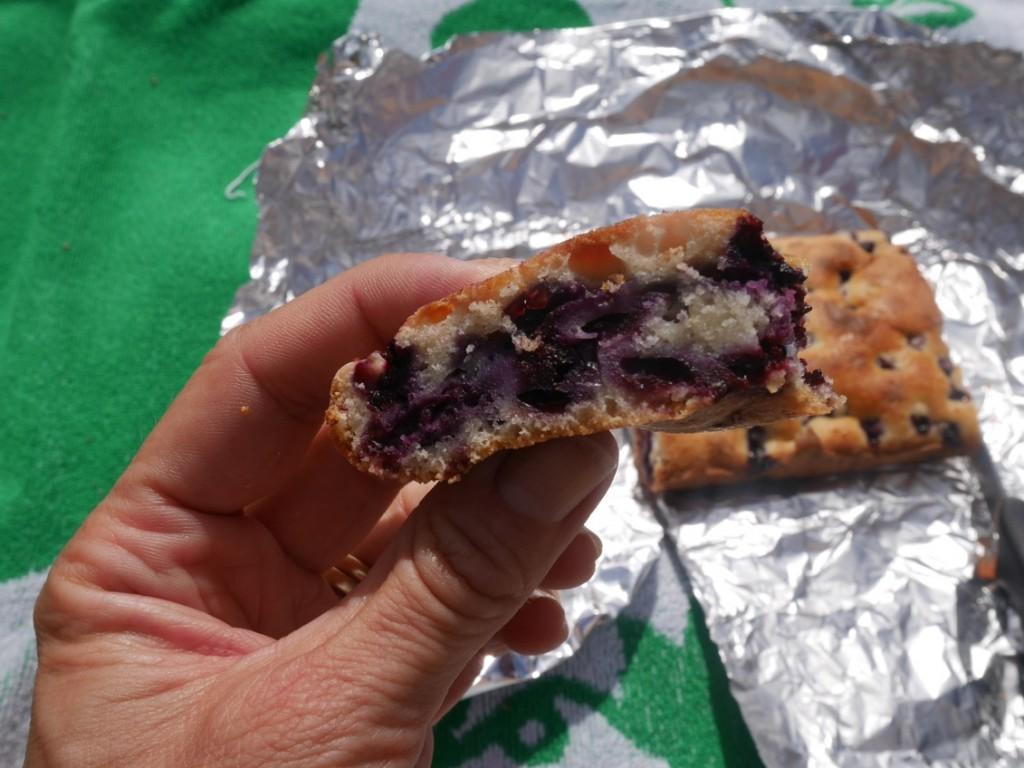 Så saftig och god hälsosam blåbärskaka!