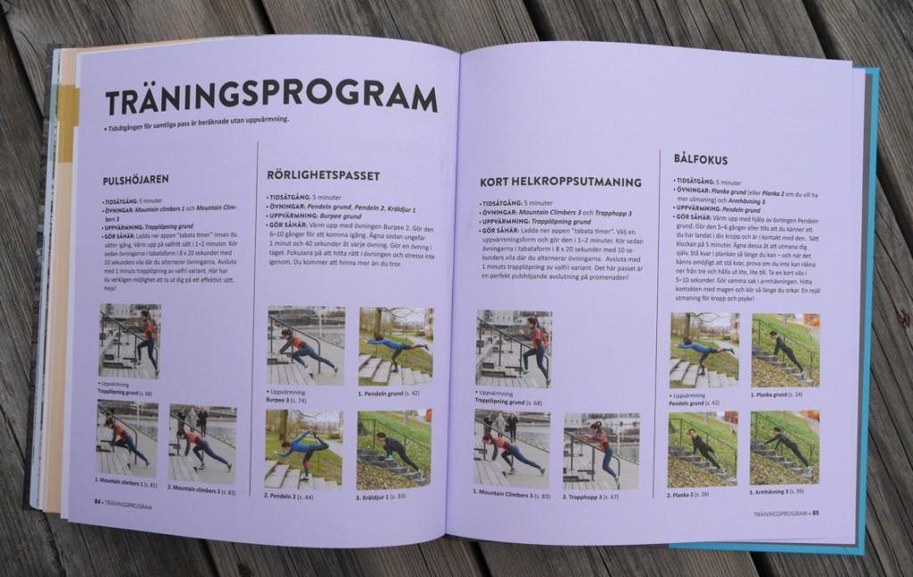 Förslag på träningsprogram.