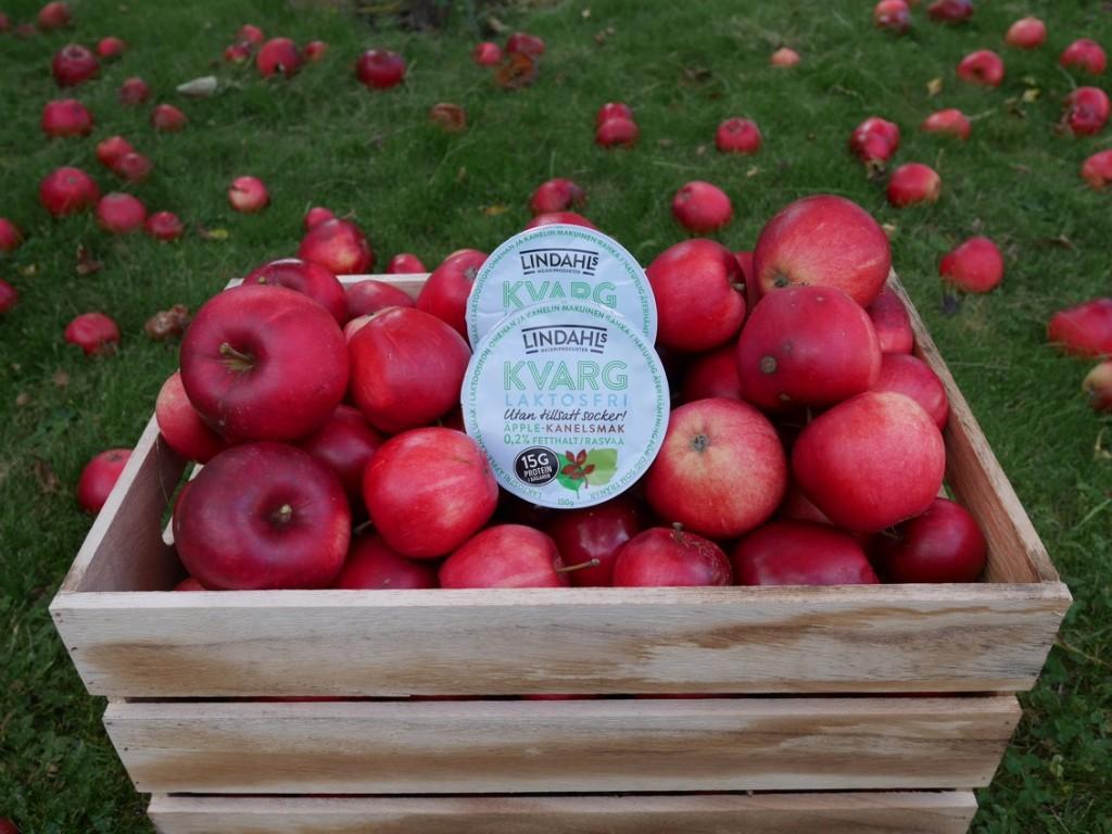 Laktosfri kvarg äpple-kanel