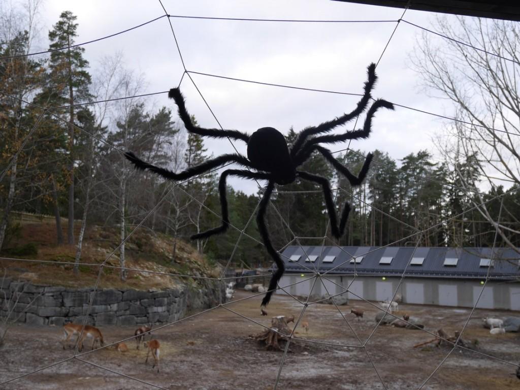 Spindlar och spindelnät som skrämmer slag på oss med spindelfobi.