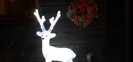 Väl på Fjäderholmarna möts man av eldar och vackra juldekorationer!