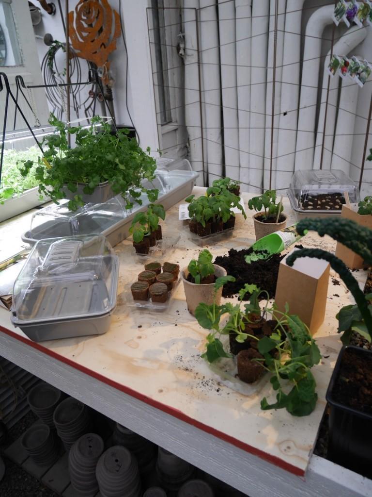 Plantera och grodda med smarta lösningar från Nelson Garden.