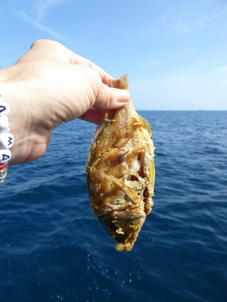 Egenfångad grillad fisk!