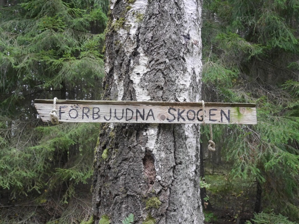 Förbjudna skogen.