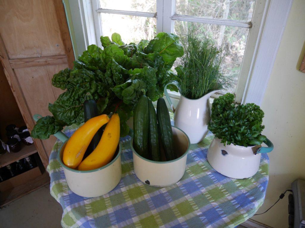 Grönsaksdröm!