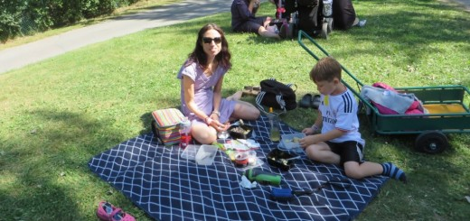 Picknick på Furuviks djurpark